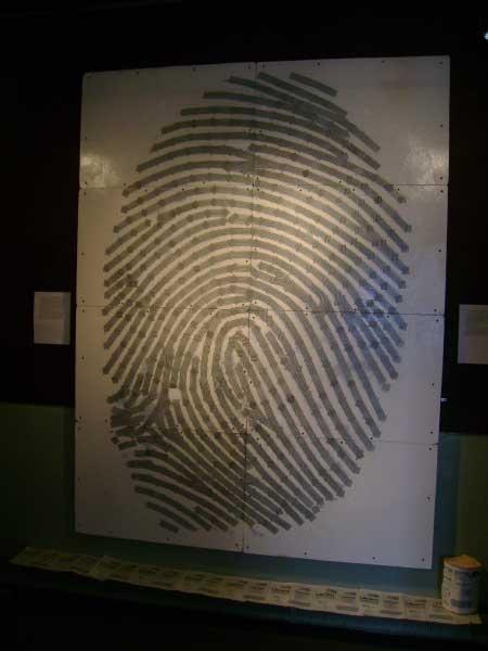 Bar Code Fingerprint-in-show, titled:
